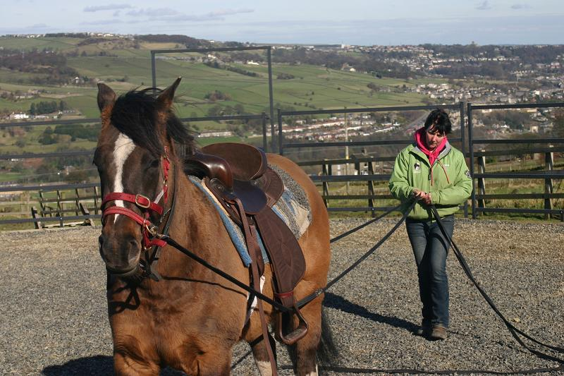 Ami practicing holistic horsemanship techniques with Birdie